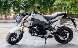 """Honda MSX125 - xế """"cưng"""" cho giới trẻ Việt"""