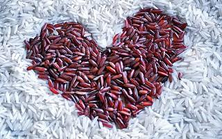 Lợi khuẩn và gạo lên men đỏ giúp giảm cholesterol