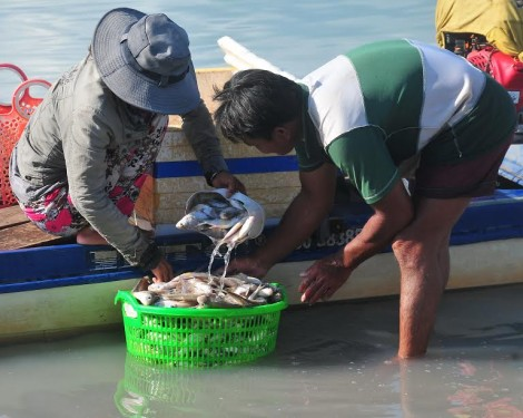 Bến cá trong hồ Dầu Tiếng