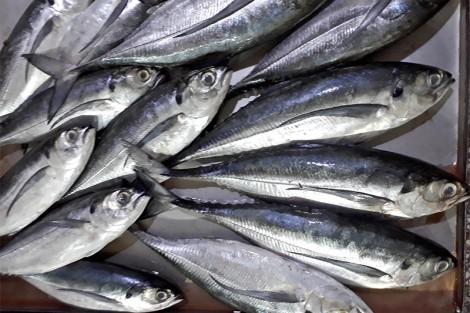 Đậm đà món cá thu kho lá chè – Hạ Long
