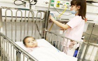 Cảnh báo dịch viêm não Nhật Bản