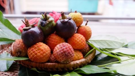 Tuyệt tác bánh dẻo hình trái cây đẹp như thật