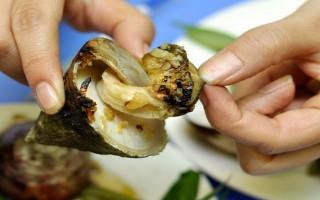 Mê mẩn với ốc vú nàng – đặc sản gợi cảm của vùng biển Việt Nam