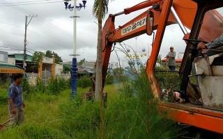 Di dời cây kiểng trên dãy phân cách đường Điện Biên Phủ