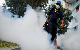 Singapore xác nhận 3 trường hợp nhiễm Zika mới