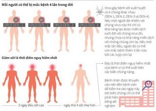 [Infographics] Những điều cần biết về bệnh sốt xuất huyết