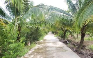 Trang trại xanh giữa làng quê thanh bình