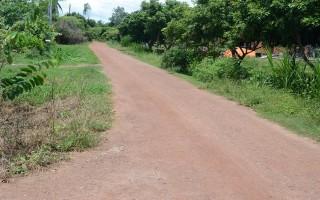 Những con đường đẹp từ sự đồng thuận của dân