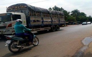 Tây Ninh: Tăng cường quản lý hoạt động kinh doanh vận tải qua thiết bị giám sát hành trình