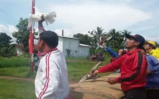 Chim bồ câu làm tăng tỷ lệ ly hôn ở Indonesia