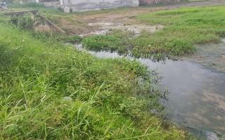 Nước thải ở KCN Thanh Điền không gây ung thư