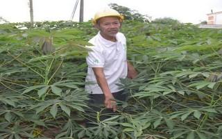 """Một nông dân Tây Ninh được vinh danh """"Nông dân Việt Nam xuất sắc năm 2017"""""""