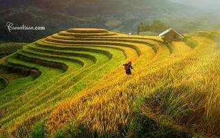 Việt Nam lọt vào Top 10 điểm đến mùa thu năm 2017