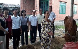 CLB Phụ nữ từ thiện tỉnh Tây Ninh trao vốn cho phụ nữ nghèo