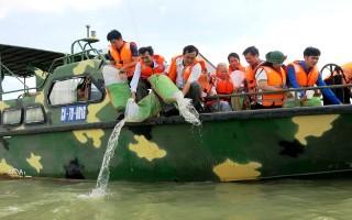 Thả 75.000 con cá giống vào hồ Dầu Tiếng