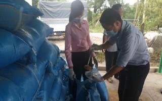 Bắt giữ hơn 2.400 bao nguyên liệu thức ăn gia súc nhập lậu