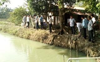 Tổng kêt mô hình nuôi tôm càng xanh thử nghiệm tại xã Lộc Ninh