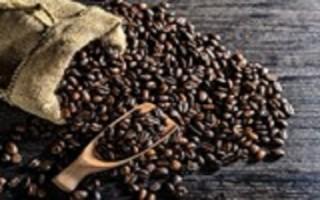 Đầu tư 170 tỷ đồng phát triển cà phê chất lượng cao