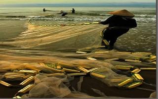 Nghệ sĩ nhiếp ảnh Lê Bi được Bộ VHTT-DL tặng bằng khen