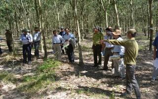 Phó Chủ tịch UBND tỉnh khảo sát khu vực 522 xã Tân Hoà, huyện Tân Châu