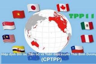 Công bố toàn văn Hiệp định Đối tác Tiến bộ và Toàn diện xuyên Thái Bình Dương