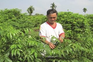 Thúc đẩy các hợp tác xã nông nghiệp ứng dụng công nghệ cao