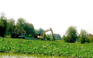 Đẩy nhanh tiến độ trục vớt lục bình trên sông Vàm Cỏ Đông