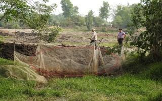 Khảo sát cánh đồng bưng Dôi Da