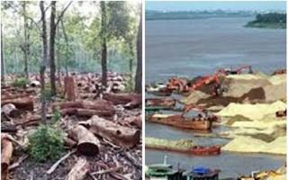 Phó Thủ tướng chấn chỉnh tình trạng phá rừng, khai thác cát, sỏi trái phép