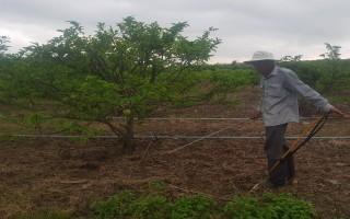 Nông dân ngày càng quan tâm bảo vệ môi trường