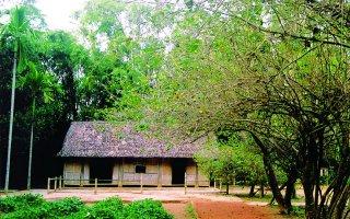 Về làng Sen viếng Bác