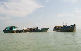 Nguy cơ ô nhiễm nguồn nước hồ Dầu Tiếng