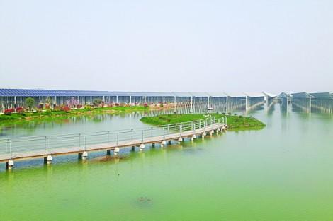 Dự án điện mặt trời đang dần hiện hữu tại Tây Ninh