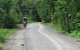 Tập trung đầu tư xây dựng xã nông thôn mới Phước Thạnh