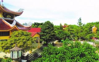 Từ Cầu Trường đến Bàu Sen, Hảo Ðước