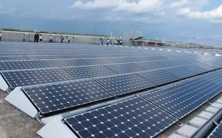 Bàn giao mặt bằng cho dự án điện năng lượng mặt trời Dầu Tiếng