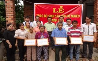 Gò Dầu: Trao vốn nuôi bò sinh sản cho hộ nghèo