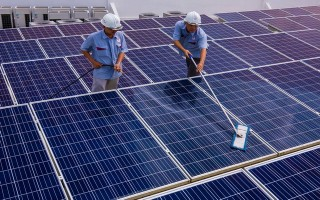 Xung quanh việc thu hồi đất làm dự án điện năng lượng mặt trời