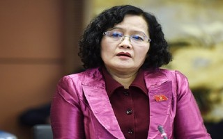 Sáng kiến lập pháp về Luật hành chính công không được trình Quốc hội