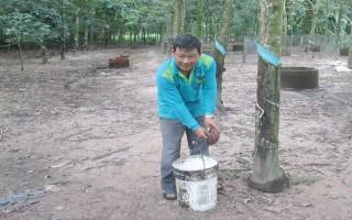 Hỗ trợ, tạo điều kiện cho nông dân nghèo vươn lên