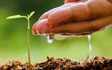 Cần có hướng dẫn cụ thể việc xác nhận hộ gia đình, cá nhân trực tiếp sản xuất nông nghiệp