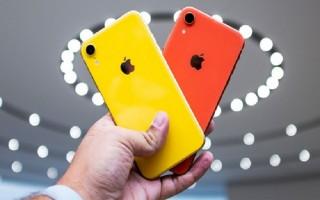 Một số mẫu iPhone XR 'cháy hàng' sau khi cho đặt trước