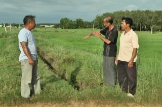 Một tuyến kênh thuộc khu tưới Tân Biên chưa phát huy hiệu quả