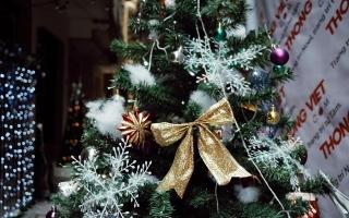 Nhộn nhịp mùa Giáng sinh