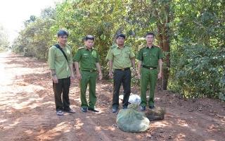 Tân Châu: Thả động vật hoang dã về rừng