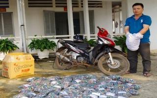 Biên phòng Tây Ninh thu giữ 36,3 kg pháo lậu