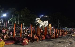 Sôi động Liên hoan Múa lân truyền thống mừng Xuân Kỷ Hợi 2019