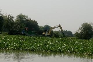 Tây Ninh: Tiếp tục trục vớt lục bình trên Sông Vàm Cỏ Đông