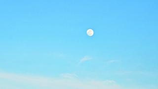 Nhớ những mùa trăng
