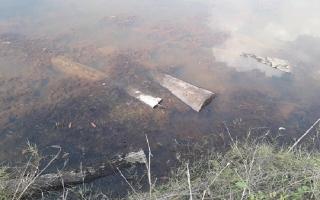 Phát hiện gỗ giấu dưới ao nước trong rừng phòng hộ Dầu Tiếng
